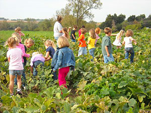 School field trips to Howell's Pumpkin Patch in Cumming, Iowa are also fun and educational.